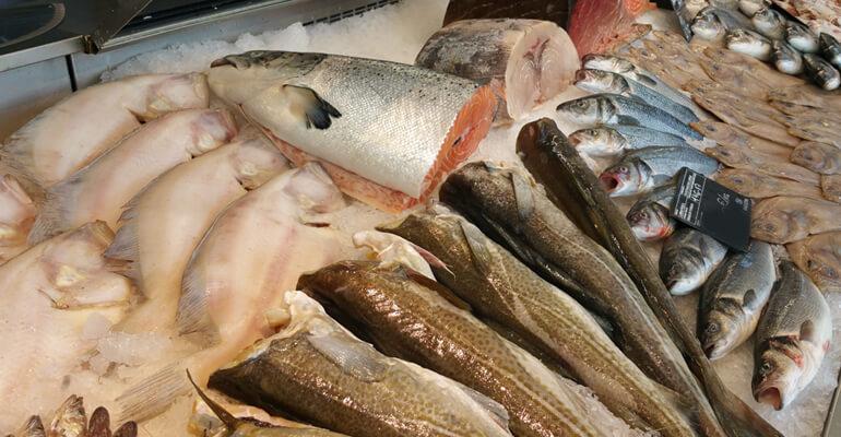 distribuidora pescado marisco