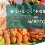 beneficios y propiedades del marisco